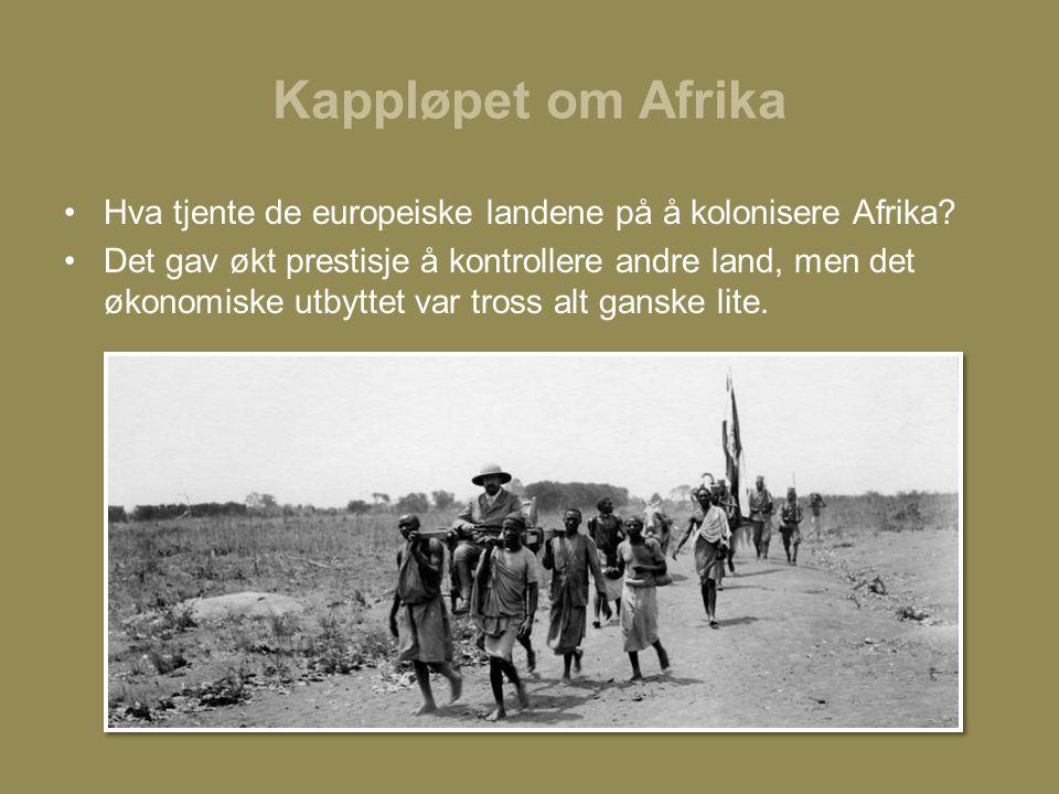 Kappløpet om Afrika •Hva tjente de europeiske landene på å kolonisere Afrika? •Det gav økt prestisje å kontrollere andre land, men det økonomiske utby