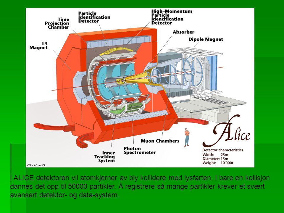 I ALICE detektoren vil atomkjerner av bly kollidere med lysfarten. I bare en kollisjon dannes det opp til 50000 partikler. Å registrere så mange parti