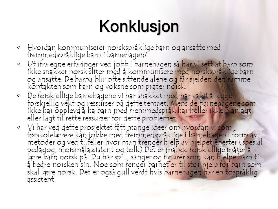 16 Konklusjon •Hvordan kommuniserer norskspråklige barn og ansatte med fremmedspråklige barn i barnehagen? •Ut ifra egne erfaringer ved jobb i barneha