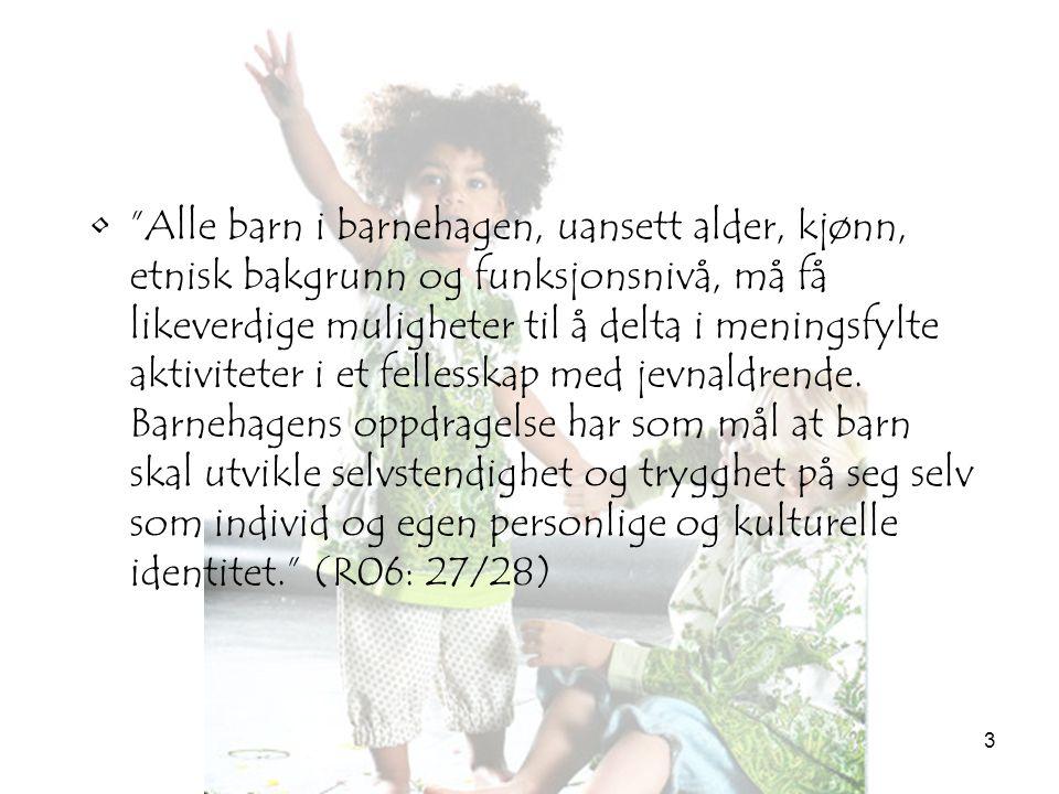 """3 •""""Alle barn i barnehagen, uansett alder, kjønn, etnisk bakgrunn og funksjonsnivå, må få likeverdige muligheter til å delta i meningsfylte aktivitete"""