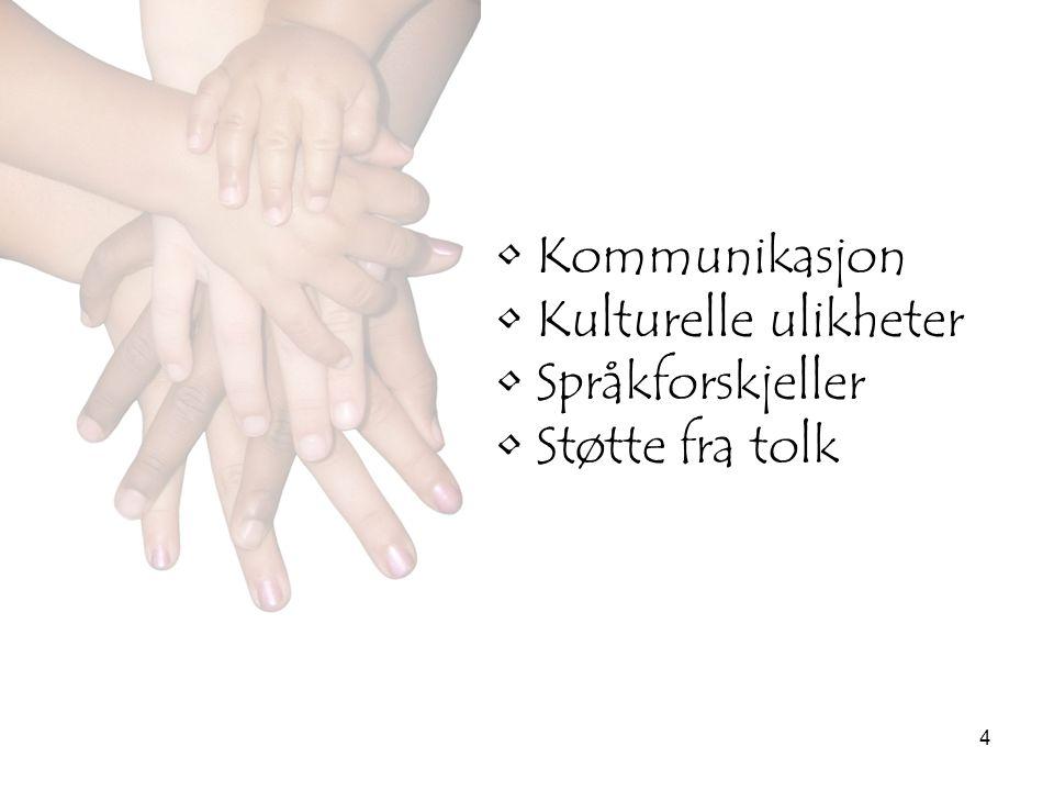 4 •Kommunikasjon •Kulturelle ulikheter •Språkforskjeller •Støtte fra tolk