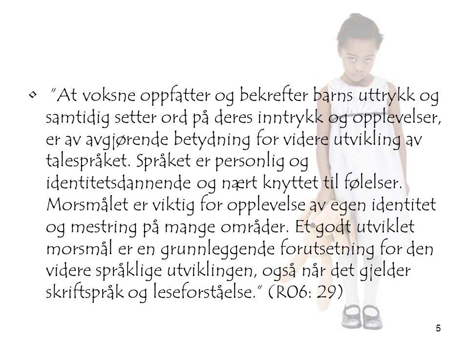 16 Konklusjon •Hvordan kommuniserer norskspråklige barn og ansatte med fremmedspråklige barn i barnehagen.