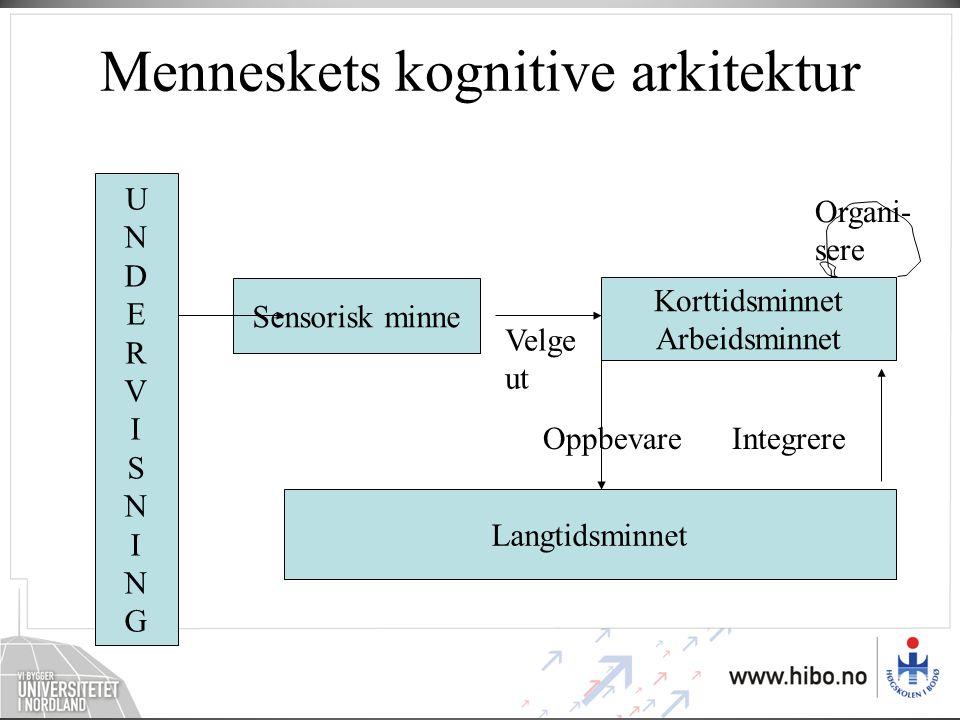 Menneskets kognitive arkitektur Sensorisk minne Korttidsminnet Arbeidsminnet Langtidsminnet UNDERVISNINGUNDERVISNING Velge ut OppbevareIntegrere Organi- sere