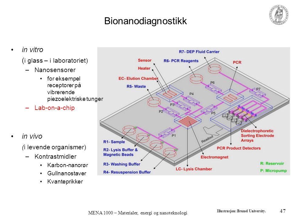 MENA 1000 – Materialer, energi og nanoteknologi Bionanodiagnostikk •in vitro ( i glass – i laboratoriet) –Nanosensorer •for eksempel receptorer på vib