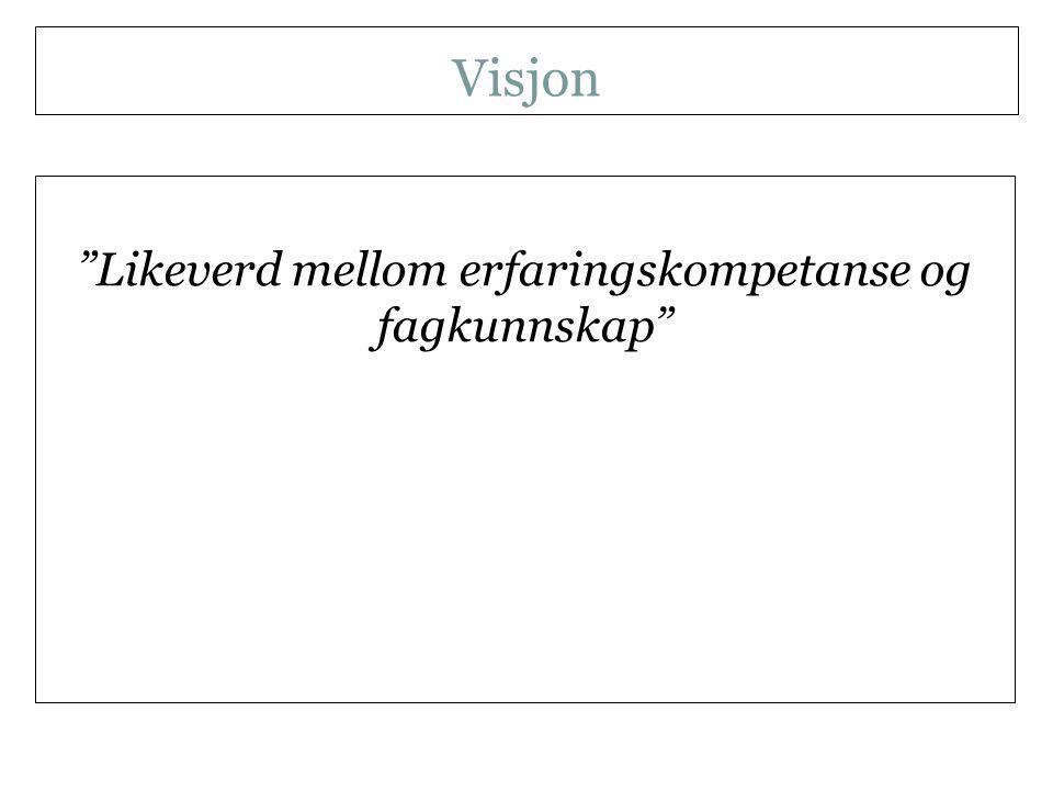 Visjon Likeverd mellom erfaringskompetanse og fagkunnskap NKLMS 21.09.11