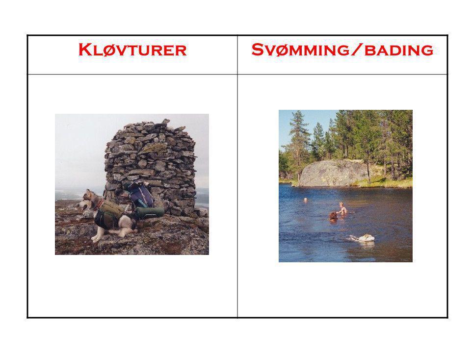 KløvturerSvømming/bading