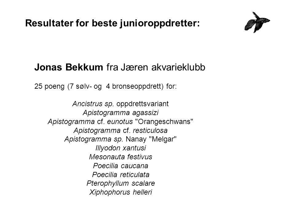 Resultater for beste junioroppdretter: Jonas Bekkum fra Jæren akvarieklubb 25 poeng (7 sølv- og 4 bronseoppdrett) for: Ancistrus sp.