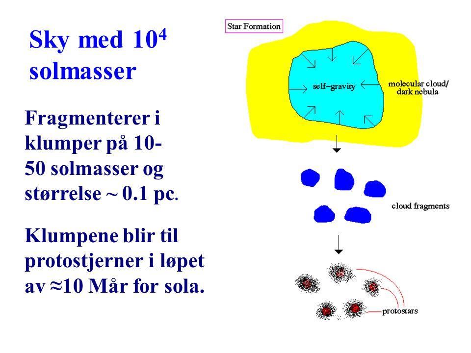 19 Sky med 10 4 solmasser Fragmenterer i klumper på 10- 50 solmasser og størrelse ~ 0.1 pc. Klumpene blir til protostjerner i løpet av ≈10 Mår for sol