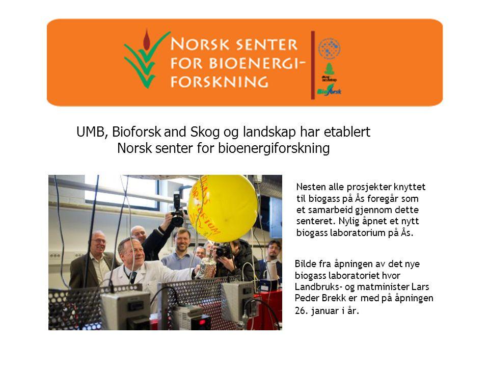 UMB, Bioforsk and Skog og landskap har etablert Norsk senter for bioenergiforskning Nesten alle prosjekter knyttet til biogass på Ås foregår som et sa