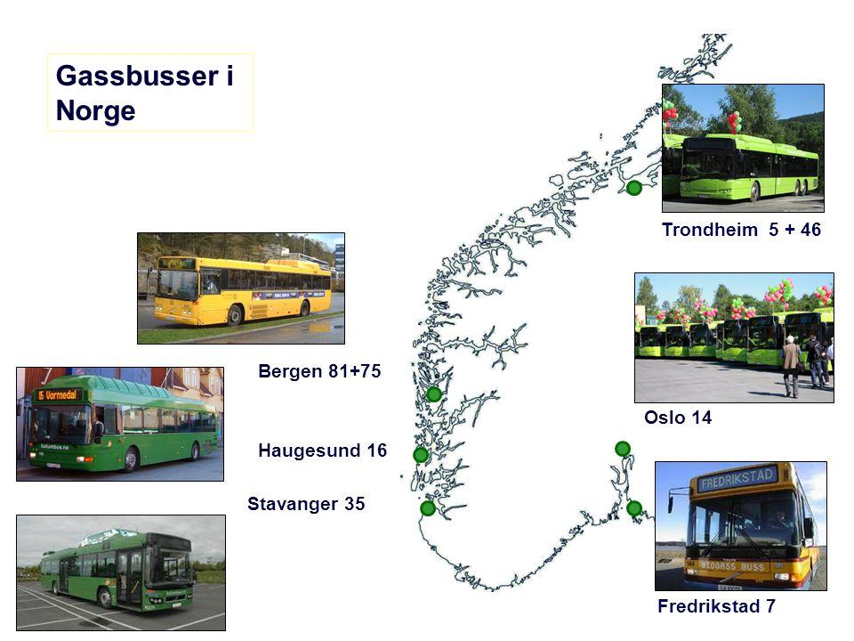 Gassbusser i Norge Bergen 81+75 Trondheim 5 + 46 Fredrikstad 7 Haugesund 16 Stavanger 35 Oslo 14