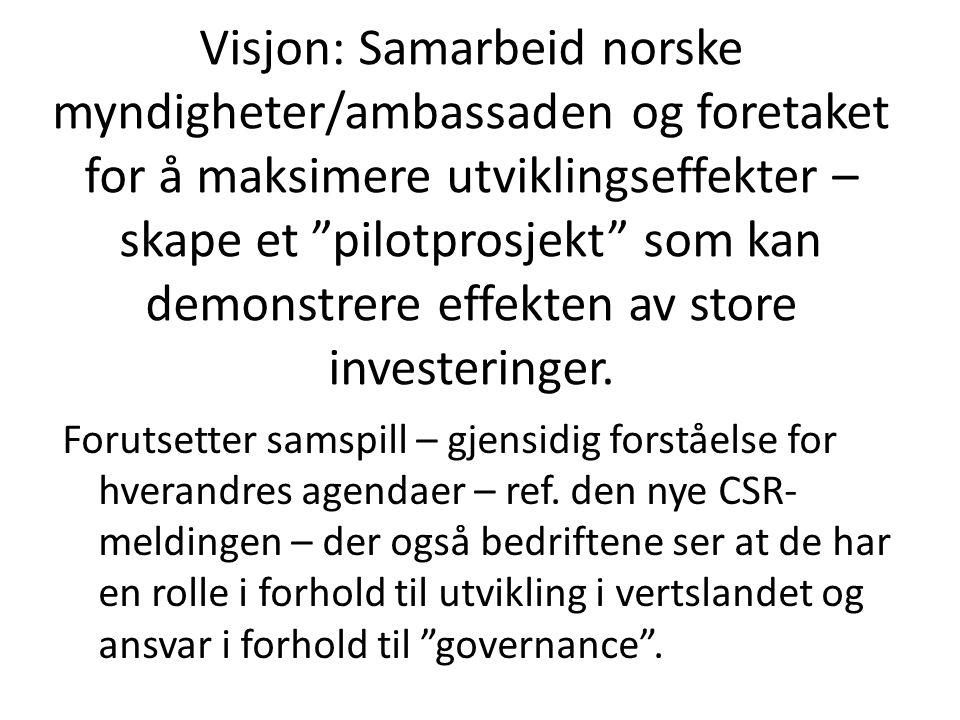 """Visjon: Samarbeid norske myndigheter/ambassaden og foretaket for å maksimere utviklingseffekter – skape et """"pilotprosjekt"""" som kan demonstrere effekte"""