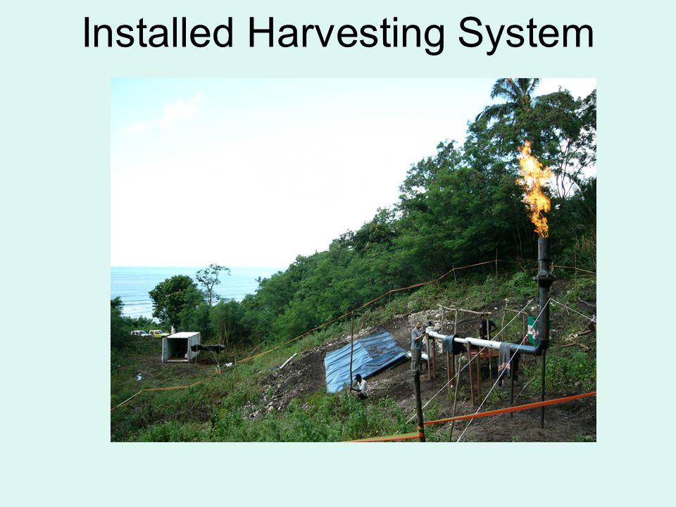 •Øst Timor sitter på enorme ressurser innen olje og gass, men mangler i all hovedsak all ekspertise, infrastruktur og økonomi til å ta ut sine reserver.