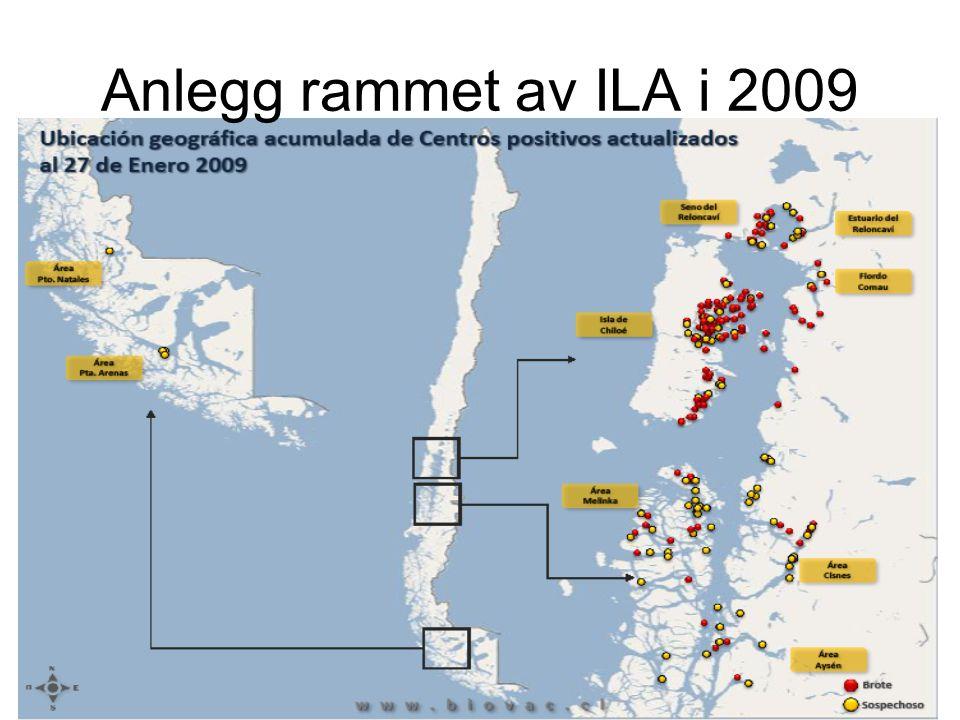 Anlegg rammet av ILA i 2009