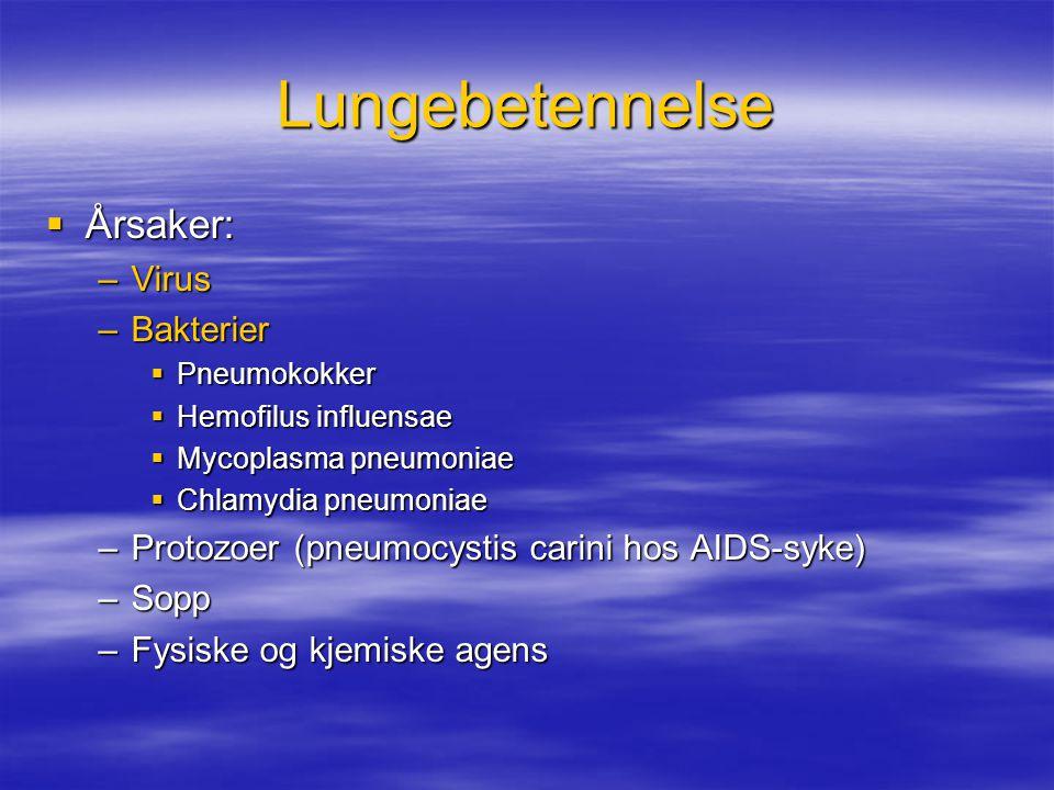 Lungebetennelse  Årsaker: –Virus –Bakterier  Pneumokokker  Hemofilus influensae  Mycoplasma pneumoniae  Chlamydia pneumoniae –Protozoer (pneumocystis carini hos AIDS-syke) –Sopp –Fysiske og kjemiske agens