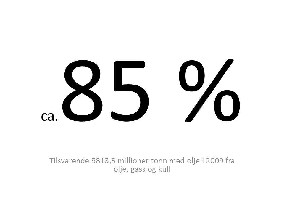Hvem forurenser i Norge?