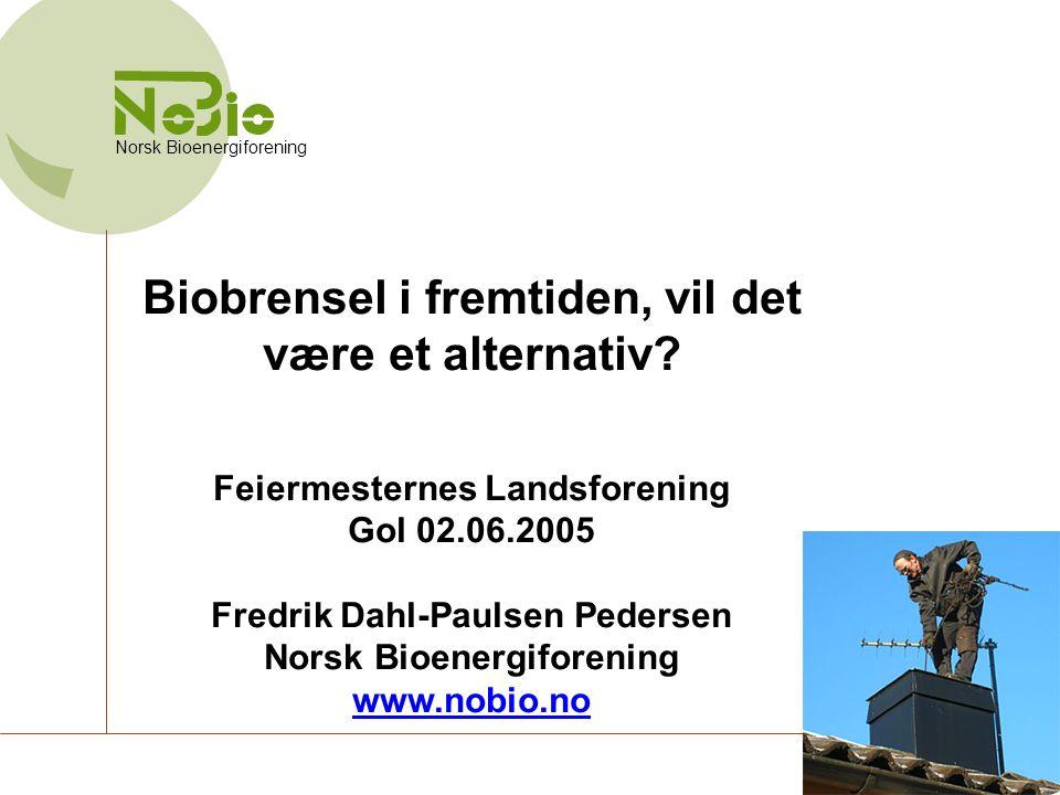 Biobrensel i fremtiden, vil det være et alternativ? Feiermesternes Landsforening Gol 02.06.2005 Fredrik Dahl-Paulsen Pedersen Norsk Bioenergiforening