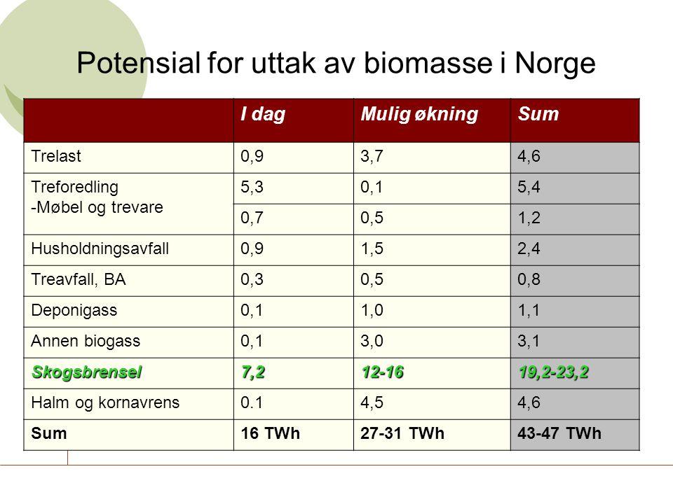 Norsk Bioenergiforening I dagMulig økningSum Trelast0,93,74,6 Treforedling -Møbel og trevare 5,30,15,4 0,70,51,2 Husholdningsavfall0,91,52,4 Treavfall