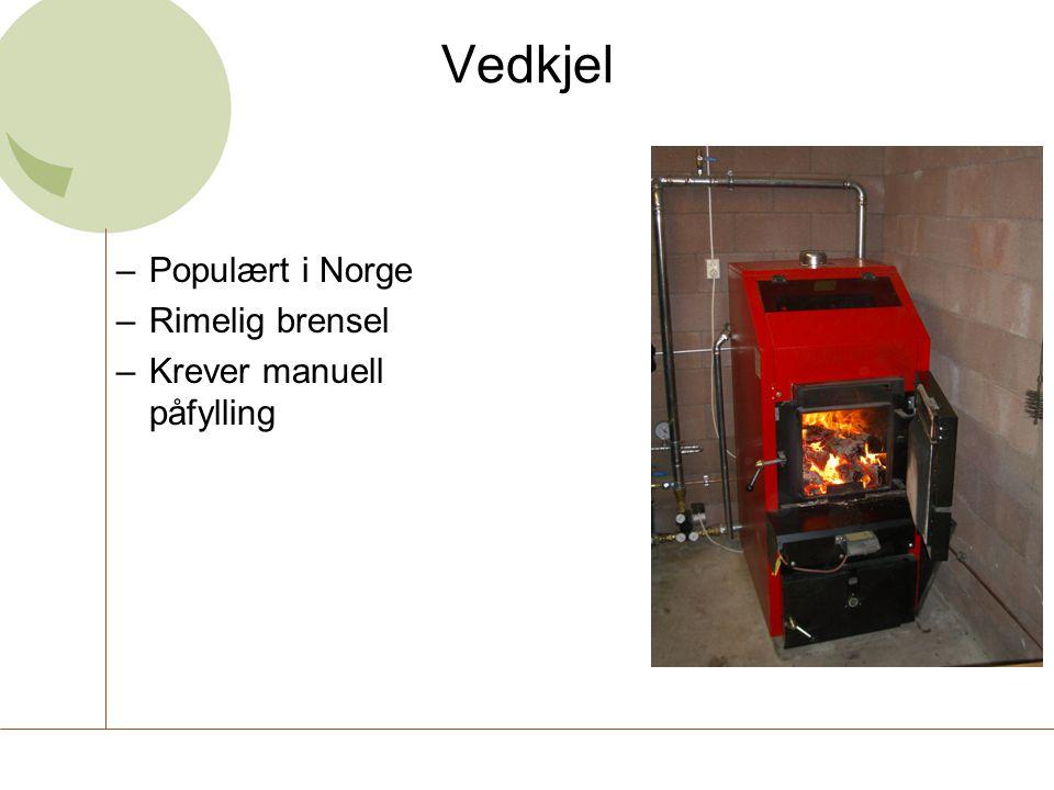 Vedkjel –Populært i Norge –Rimelig brensel –Krever manuell påfylling