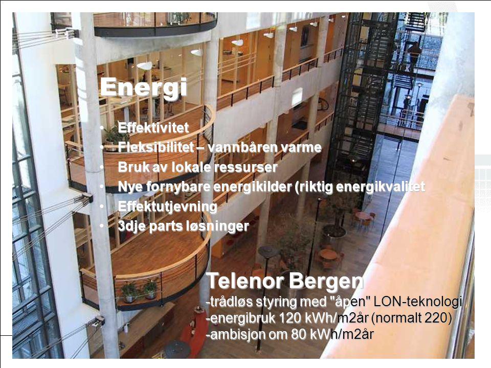 © ØkoBygg – et program i GRIP Energi Telenor •Effektivitet •Fleksibilitet – vannbåren varme •Bruk av lokale ressurser •Nye fornybare energikilder (rik