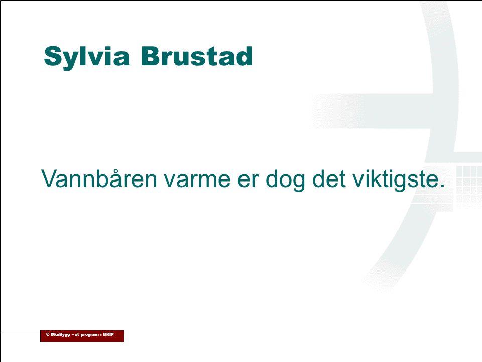 © ØkoBygg – et program i GRIP Sylvia Brustad Vannbåren varme er dog det viktigste.