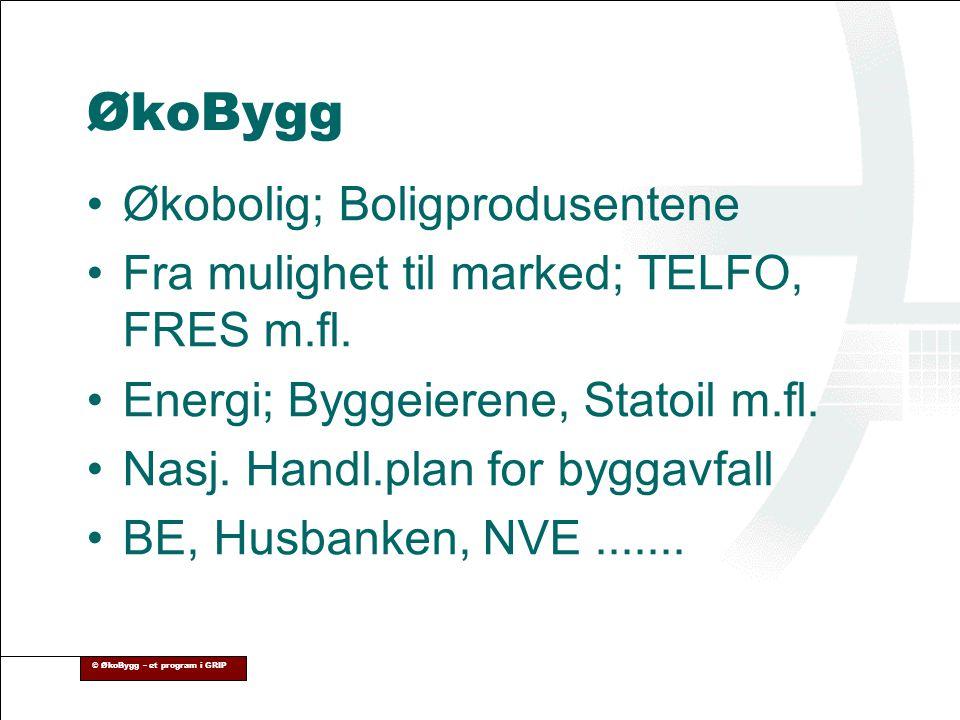© ØkoBygg – et program i GRIP ØkoBygg •Økobolig; Boligprodusentene •Fra mulighet til marked; TELFO, FRES m.fl. •Energi; Byggeierene, Statoil m.fl. •Na