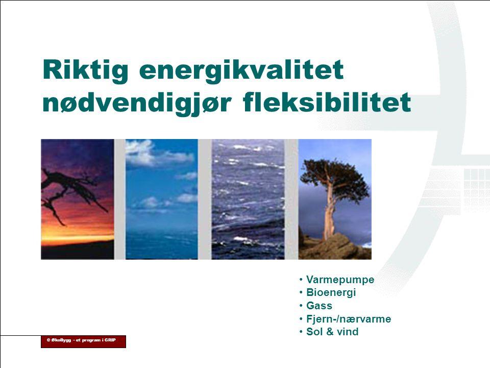© ØkoBygg – et program i GRIP Riktig energikvalitet nødvendigjør fleksibilitet • Varmepumpe • Bioenergi • Gass • Fjern-/nærvarme • Sol & vind