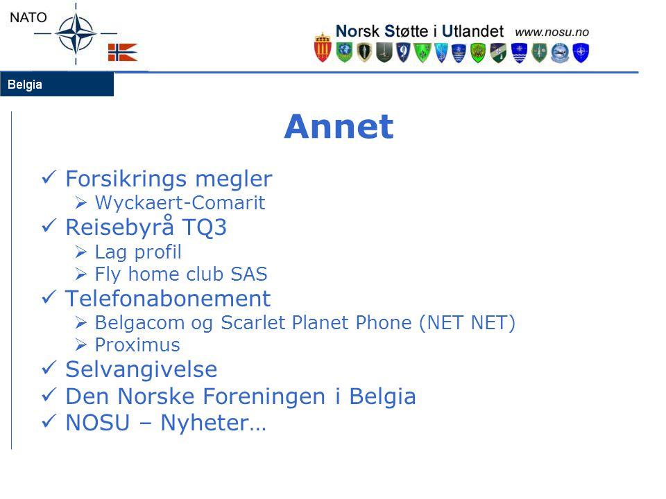 Annet  Forsikrings megler  Wyckaert-Comarit  Reisebyrå TQ3  Lag profil  Fly home club SAS  Telefonabonement  Belgacom og Scarlet Planet Phone (NET NET)  Proximus  Selvangivelse  Den Norske Foreningen i Belgia  NOSU – Nyheter…