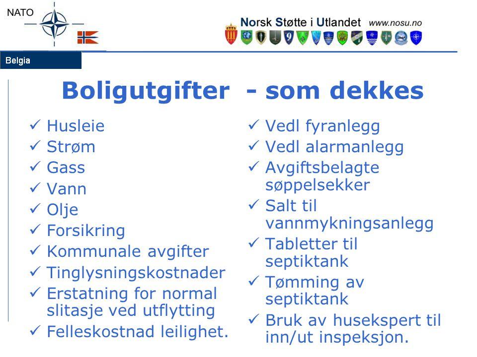 Boligutgifter - som dekkes  Husleie  Strøm  Gass  Vann  Olje  Forsikring  Kommunale avgifter  Tinglysningskostnader  Erstatning for normal slitasje ved utflytting  Felleskostnad leilighet.