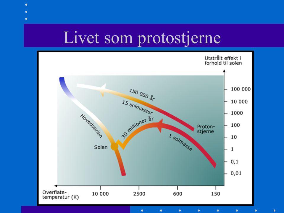 En stjerne blir født (m>0,08m s ) •Sentraltemperatur T>5 millioner kelvin •Kjernereaksjoner kommer i gang •Når det blir likevekt mellom tyngdekreftene og strålingstrykket stopper sammentrekningen •Finner sin plass på hovedserien i H-R diagrammet •Stor masse – oppe til venstre – kort levetid •Liten masse – nede til høyre – lang levetid
