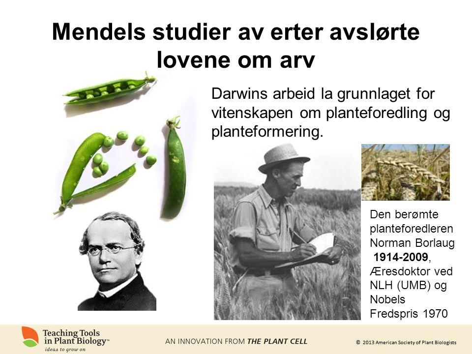 © 2013 American Society of Plant Biologists Mendels studier av erter avslørte lovene om arv Darwins arbeid la grunnlaget for vitenskapen om planteforedling og planteformering.