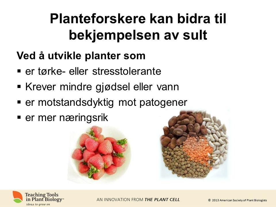 © 2013 American Society of Plant Biologists Planteforskere kan bidra til bekjempelsen av sult Ved å utvikle planter som  er tørke- eller stresstolerante  Krever mindre gjødsel eller vann  er motstandsdyktig mot patogener  er mer næringsrik