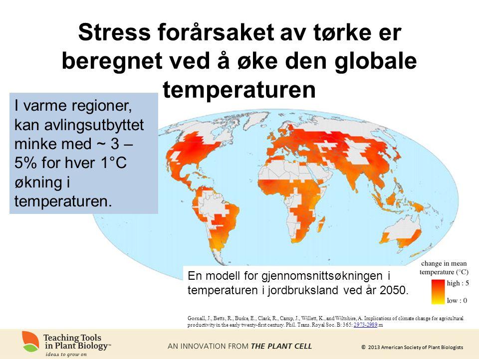 © 2013 American Society of Plant Biologists Stress forårsaket av tørke er beregnet ved å øke den globale temperaturen Gornall, J., Betts, R., Burke, E., Clark, R., Camp, J., Willett, K., and Wiltshire, A.