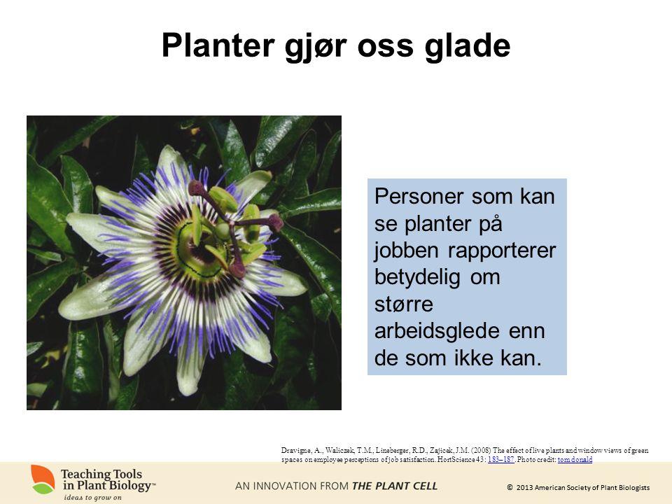 © 2013 American Society of Plant Biologists Hvordan ville verden reagere på en sykdom som påvirket befolkningen i USA, Canada og den europeiske unionen?