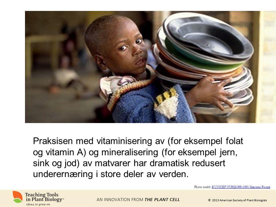 © 2013 American Society of Plant Biologists Praksisen med vitaminisering av (for eksempel folat og vitamin A) og mineralisering (for eksempel jern, sink og jod) av matvarer har dramatisk redusert underernæring i store deler av verden.