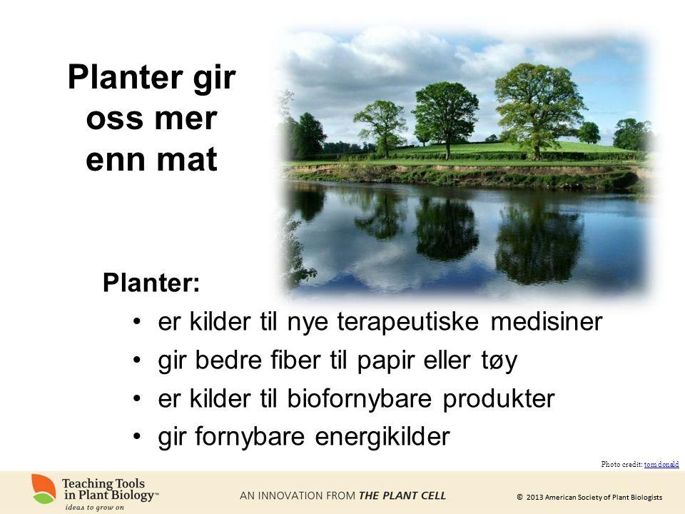 © 2013 American Society of Plant Biologists Planter: •er kilder til nye terapeutiske medisiner •gir bedre fiber til papir eller tøy •er kilder til bio