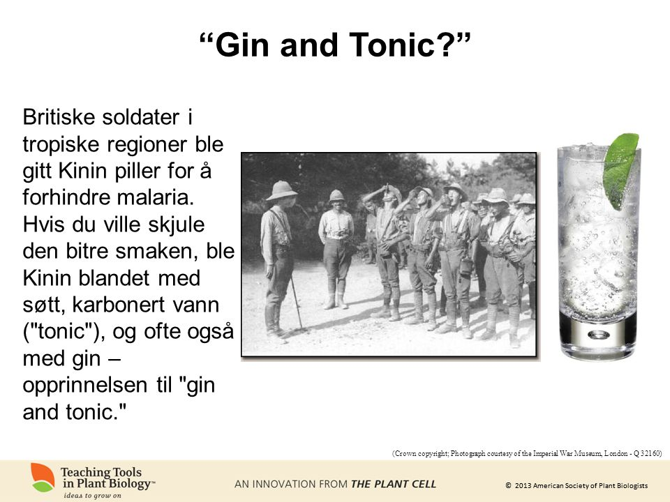 "© 2013 American Society of Plant Biologists ""Gin and Tonic?"" (Crown copyright; Photograph courtesy of the Imperial War Museum, London - Q 32160) Briti"
