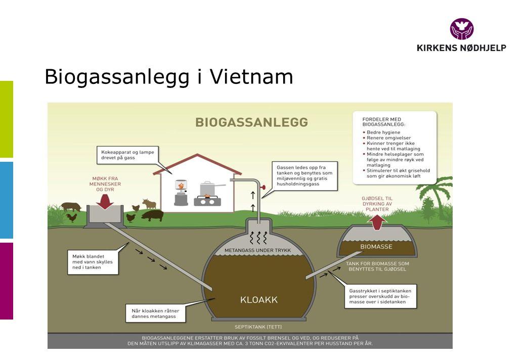 Biogassanlegg i Vietnam