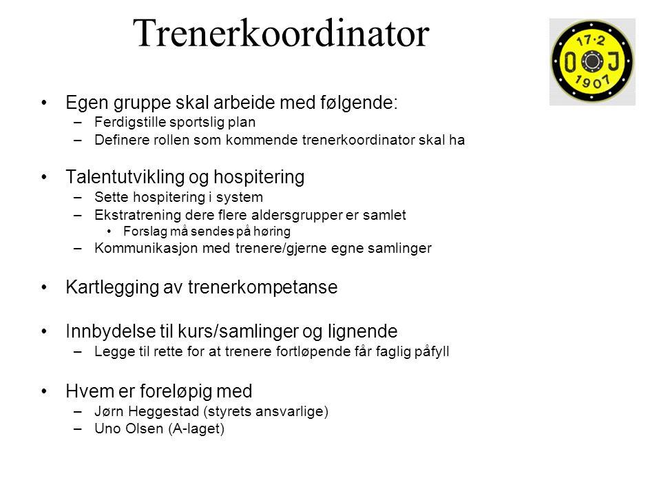 Trenerkoordinator •Egen gruppe skal arbeide med følgende: –Ferdigstille sportslig plan –Definere rollen som kommende trenerkoordinator skal ha •Talent