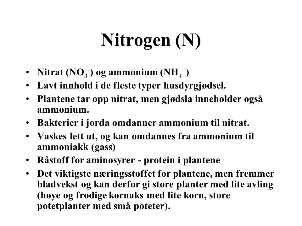 Nitrogen (N) •Nitrat (NO 3 - ) og ammonium (NH 4 + ) •Lavt innhold i de fleste typer husdyrgjødsel. •Plantene tar opp nitrat, men gjødsla inneholder o