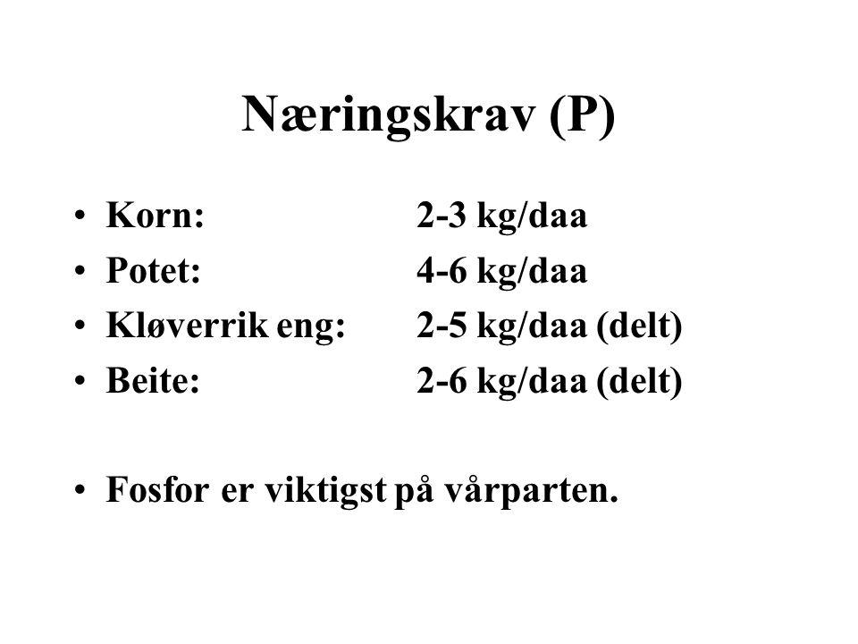 Næringskrav (P) •Korn:2-3 kg/daa •Potet:4-6 kg/daa •Kløverrik eng:2-5 kg/daa (delt) •Beite:2-6 kg/daa (delt) •Fosfor er viktigst på vårparten.