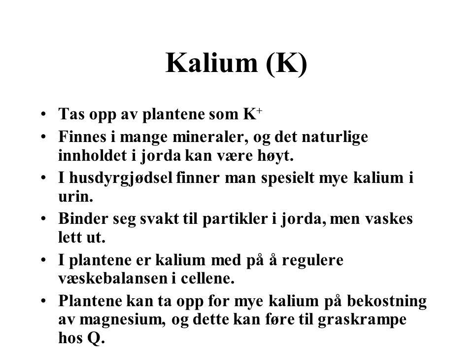 Kalium (K) •Tas opp av plantene som K + •Finnes i mange mineraler, og det naturlige innholdet i jorda kan være høyt. •I husdyrgjødsel finner man spesi