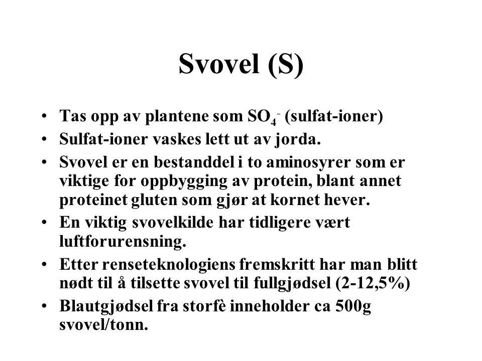 Svovel (S) •Tas opp av plantene som SO 4 - (sulfat-ioner) •Sulfat-ioner vaskes lett ut av jorda. •Svovel er en bestanddel i to aminosyrer som er vikti