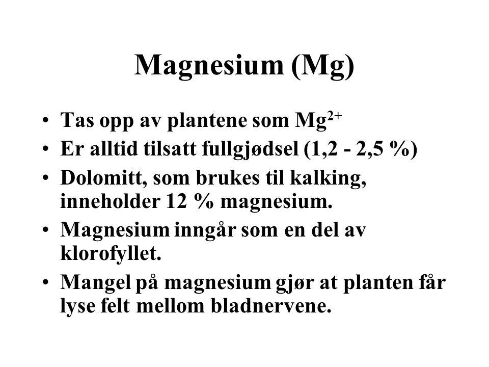 Magnesium (Mg) •Tas opp av plantene som Mg 2+ •Er alltid tilsatt fullgjødsel (1,2 - 2,5 %) •Dolomitt, som brukes til kalking, inneholder 12 % magnesiu