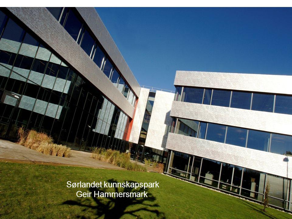 Sørlandet kunnskapspark Geir Hammersmark