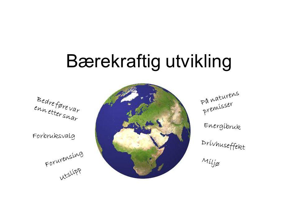 Bærekraftig utvikling Bedre føre var enn etter snar På naturens premisser Forbruksvalg Energibruk Utslipp Drivhuseffekt Forurensing Miljø