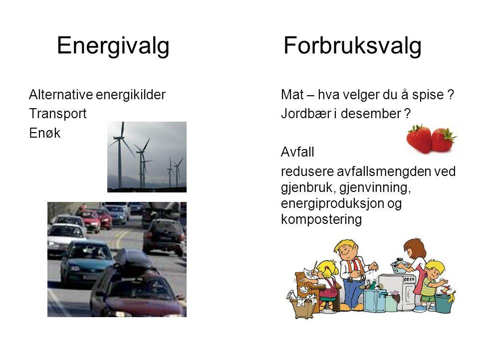 Energivalg Alternative energikilder Transport Enøk Forbruksvalg Mat – hva velger du å spise ? Jordbær i desember ? Avfall redusere avfallsmengden ved