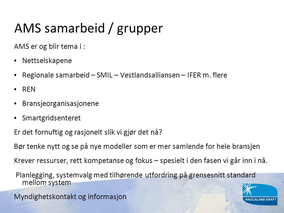 AMS samarbeid / grupper AMS er og blir tema i : • Nettselskapene • Regionale samarbeid – SMIL – Vestlandsalliansen – IFER m. flere • REN • Bransjeorga