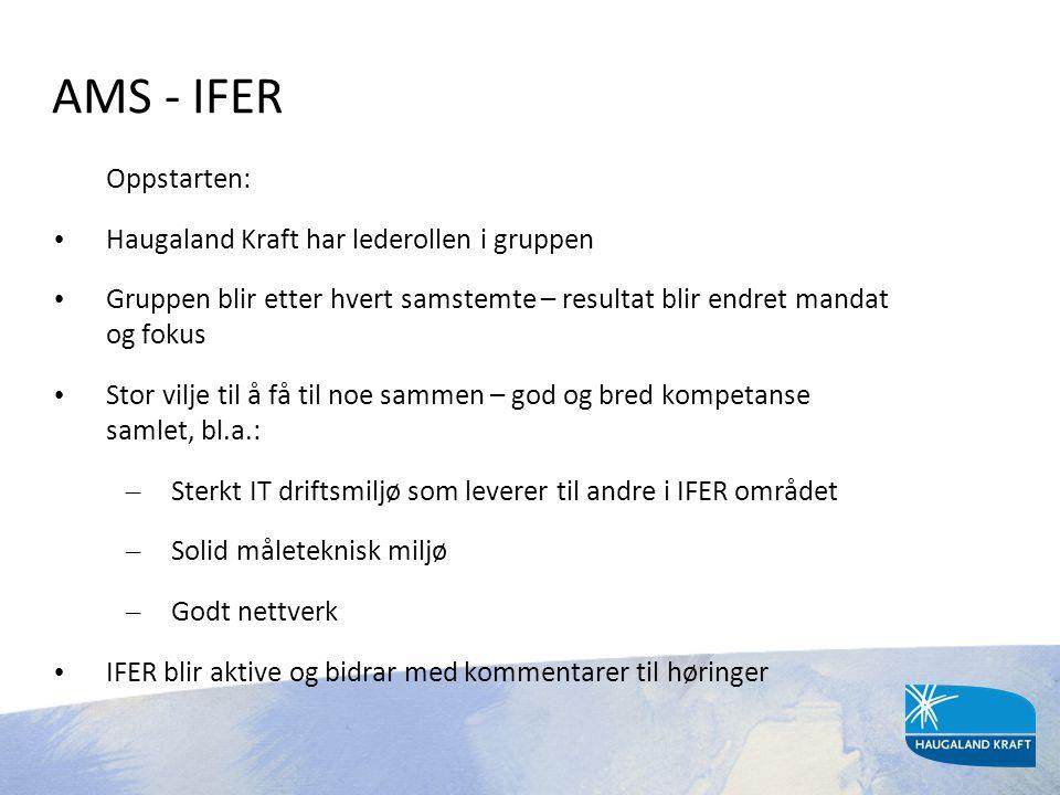 AMS - IFER Oppstarten: • Haugaland Kraft har lederollen i gruppen • Gruppen blir etter hvert samstemte – resultat blir endret mandat og fokus • Stor v