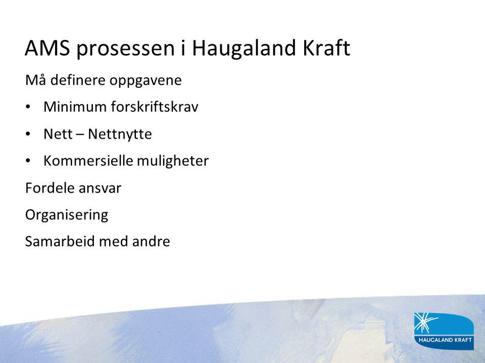 AMS prosessen i Haugaland Kraft Må definere oppgavene • Minimum forskriftskrav • Nett – Nettnytte • Kommersielle muligheter Fordele ansvar Organiserin