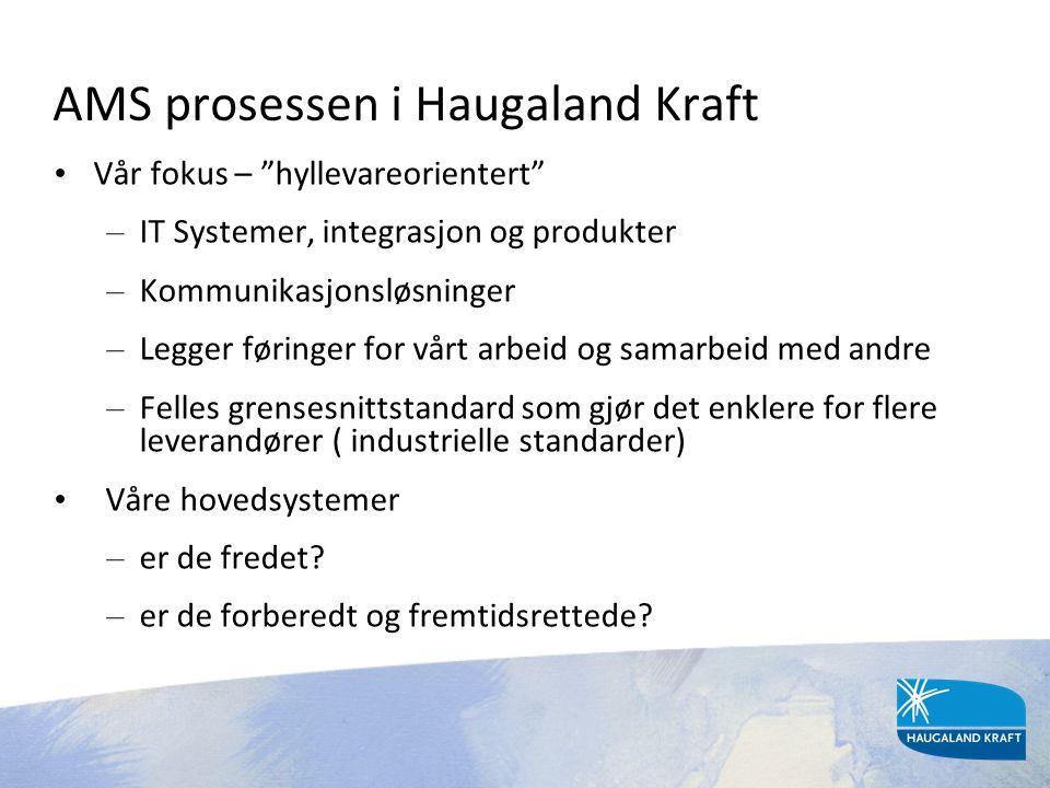 """AMS prosessen i Haugaland Kraft • Vår fokus – """"hyllevareorientert"""" – IT Systemer, integrasjon og produkter – Kommunikasjonsløsninger – Legger føringer"""